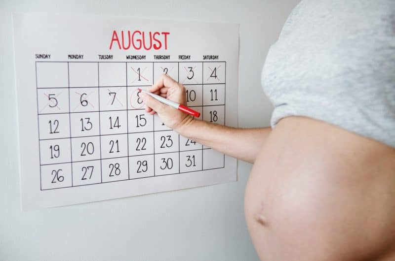 What is the Timeline for Surrogates?